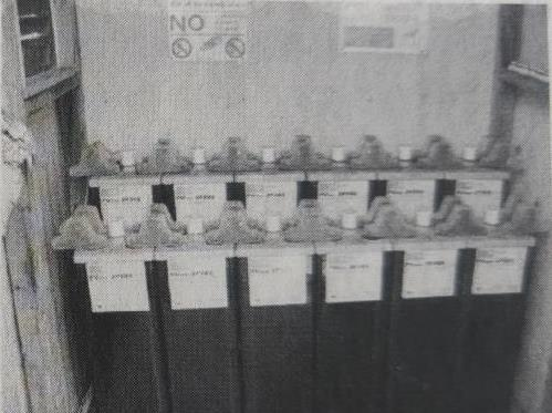 Battery pack in independent solar power generation system